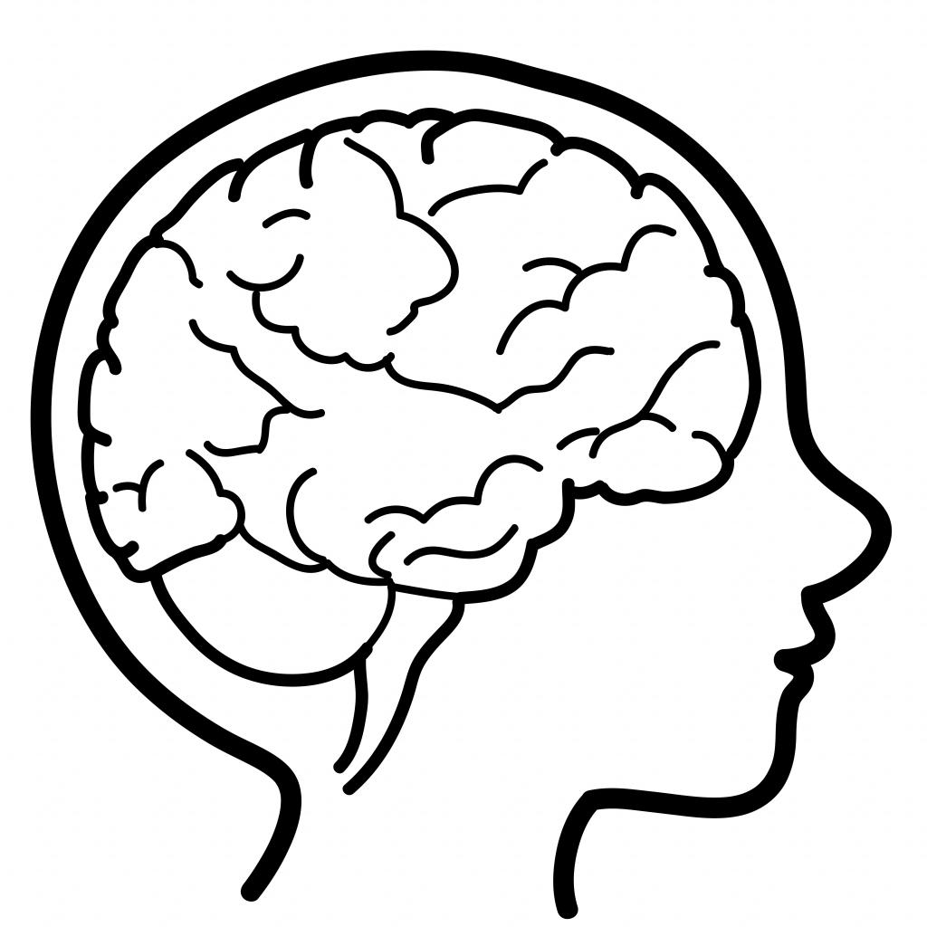 brain cartoon drawing at getdrawingscom free for