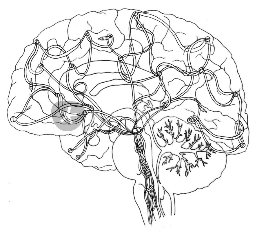 887x800 Electrical Brain Drawing Art Prints And Posters By Ant J