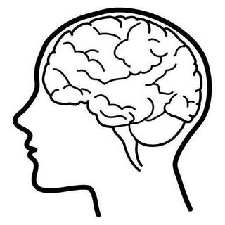 320x320 Gallery Easy Drawings Of Brains,