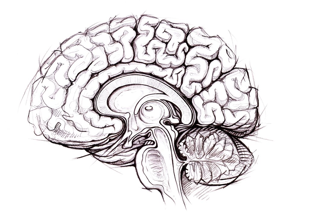 1024x707 How The Brain Sees Art Big Think