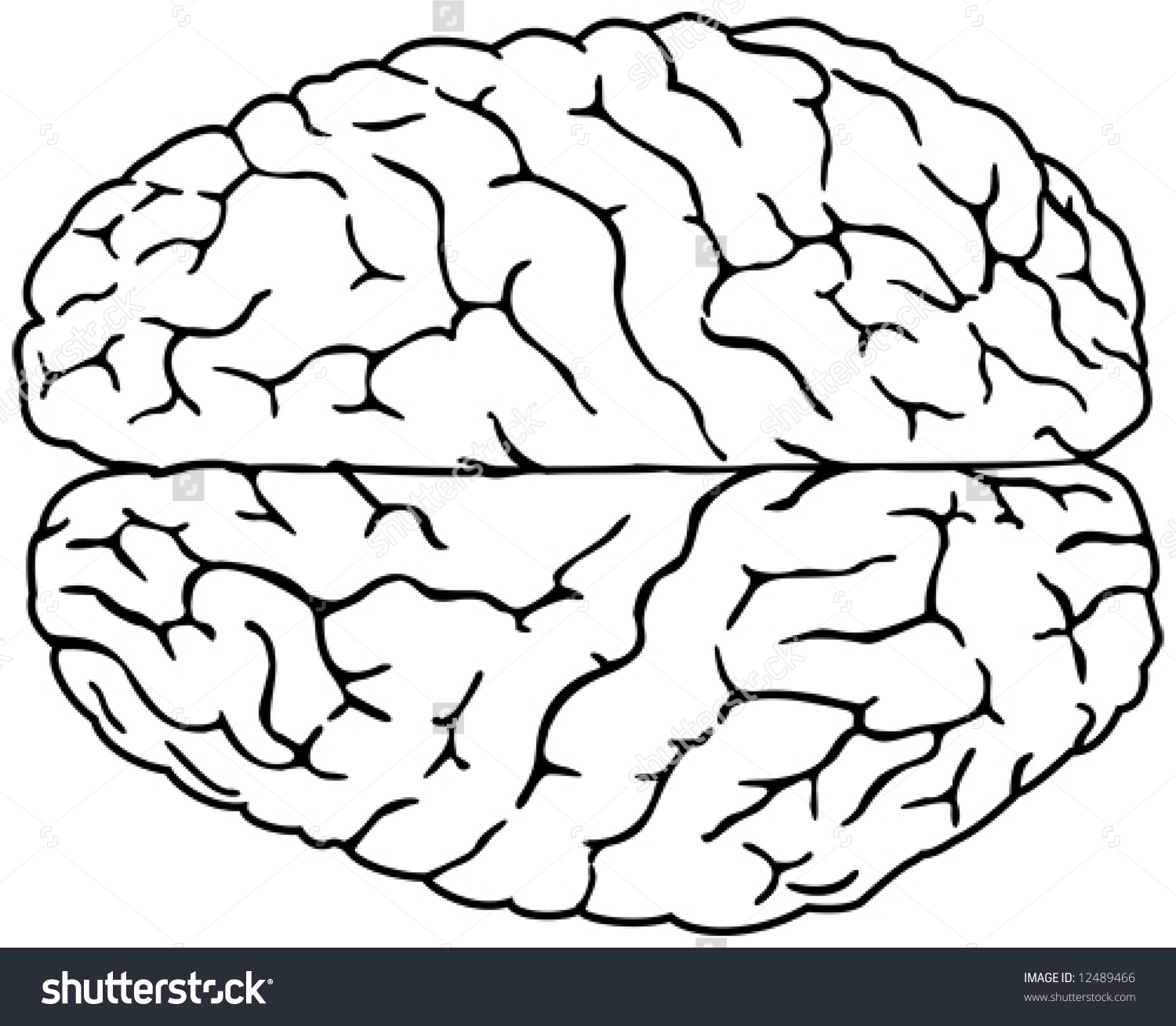 1500x1309 Simple Drawing Of A Brain