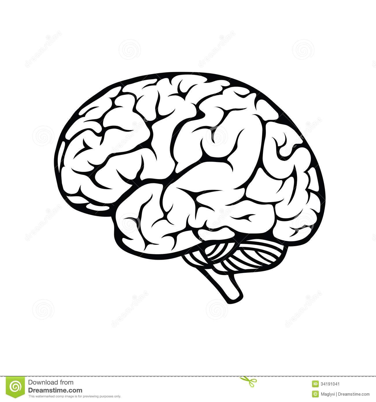 Brain Drawing Cartoon
