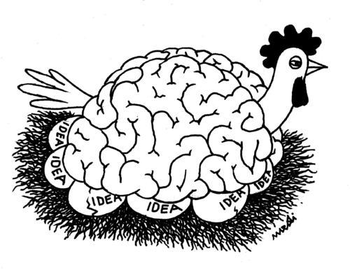500x386 Chicken Of Ideas By Medi Belortaja Philosophy Cartoon Toonpool