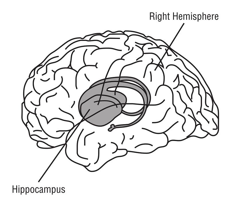 812x720 Depression Isn'T A Choice, It's A Kind Of Brain Damage