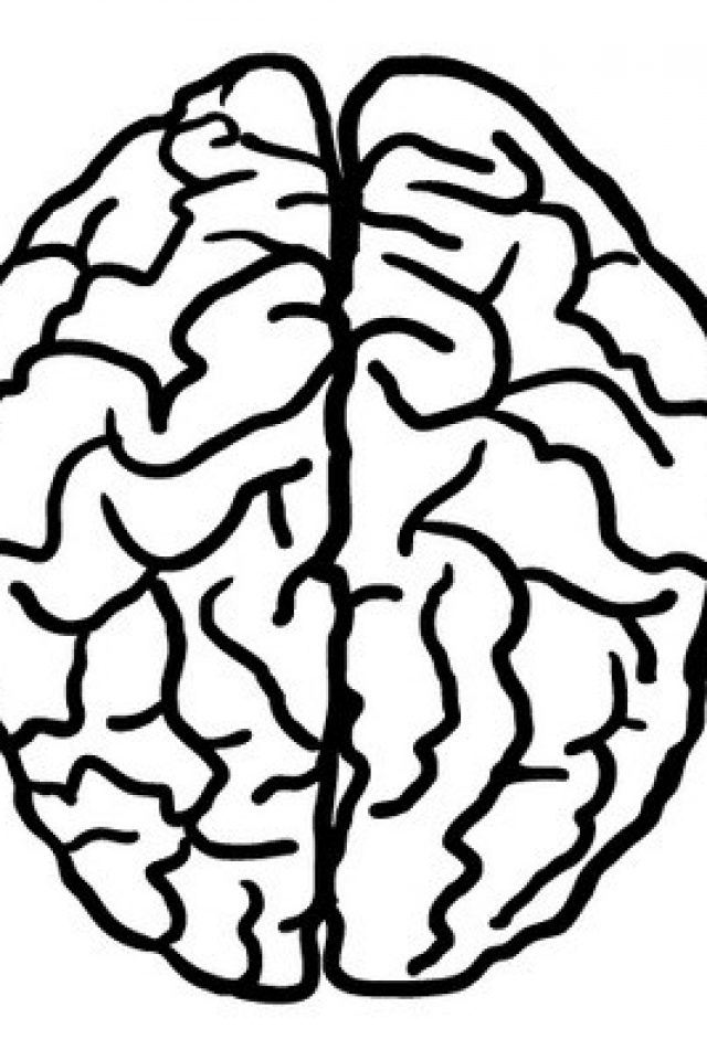 640x960 Draw Brain Coloring Page 17 Additional Line Drawings