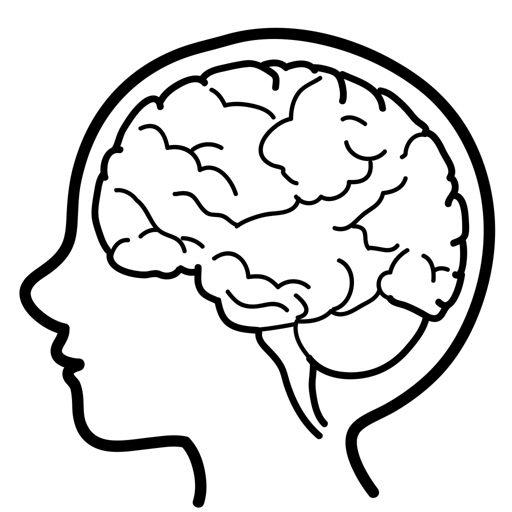 1024x1024 Images Of Simple Drawing Of A Brain Simple Brain Drawing