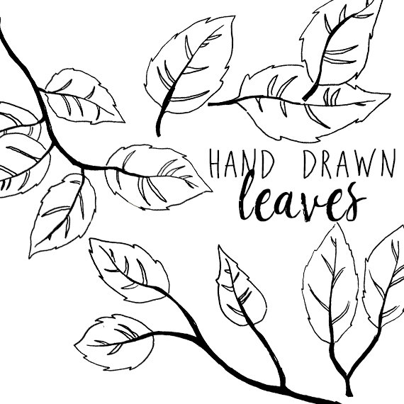 570x570 Ink Drawing Leaf Branch Clip Art For Scrapbooking Holiday Season