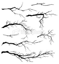 236x259 Love Pen And Ink Drawings Of Trees, This Website Teaches You How