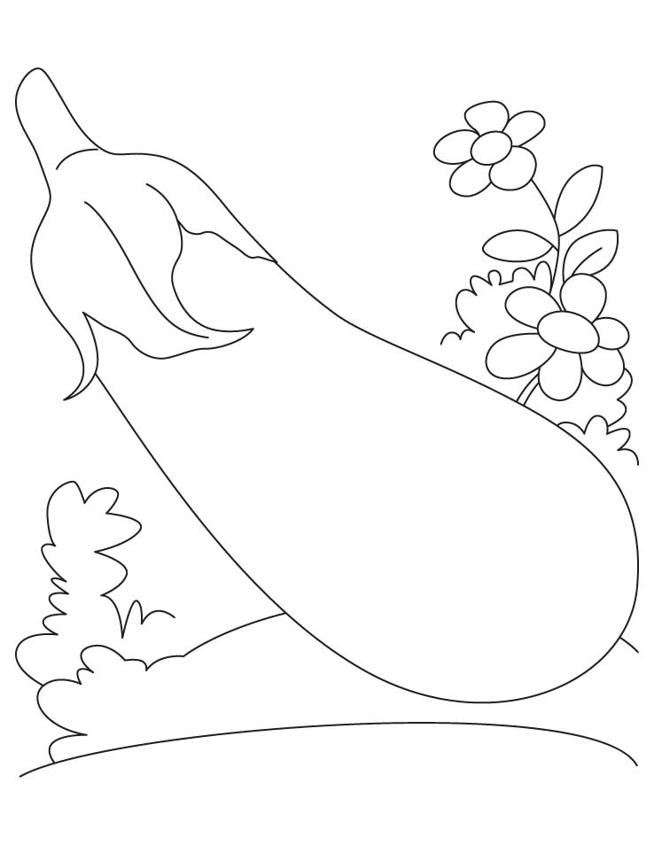 738x954 Eggplant Flower Coloring Pages Download Free Eggplant