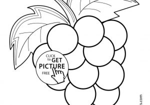 300x210 Drawing For Kids Fruits
