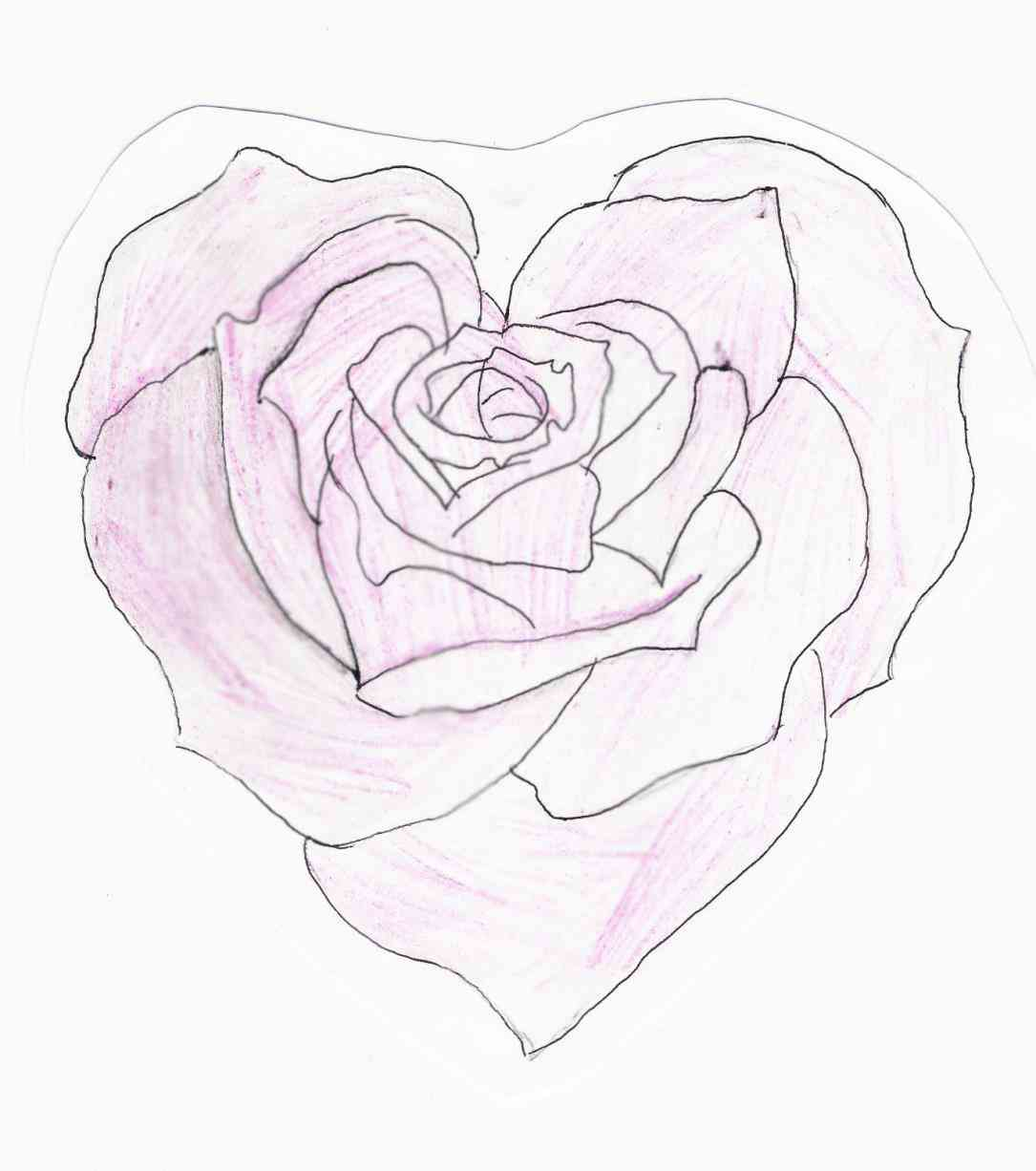 1085x1226 Broken Heart With Rose Drawings In Pencil Broken Heart With Rose