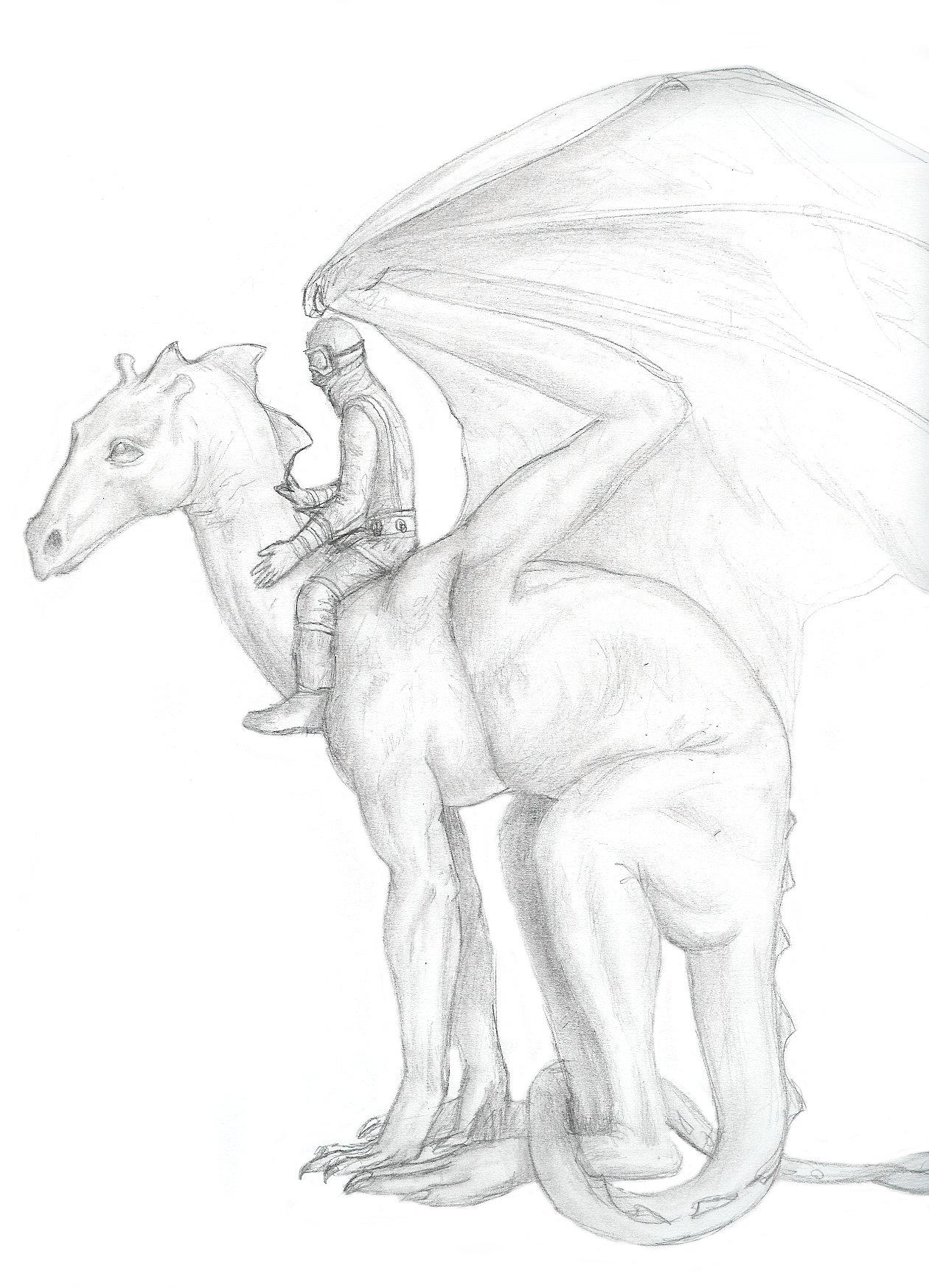 1260x1746 Dragonrider By Bronze Dragonrider