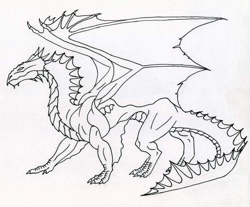 800x662 Bronze Dragon Line Art By Kamakazi32