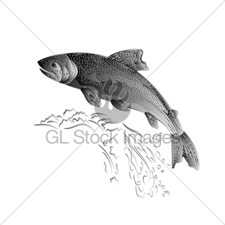 325x325 American Brook Trout As Wrought Metal Vintage Vector Gl Stock Images