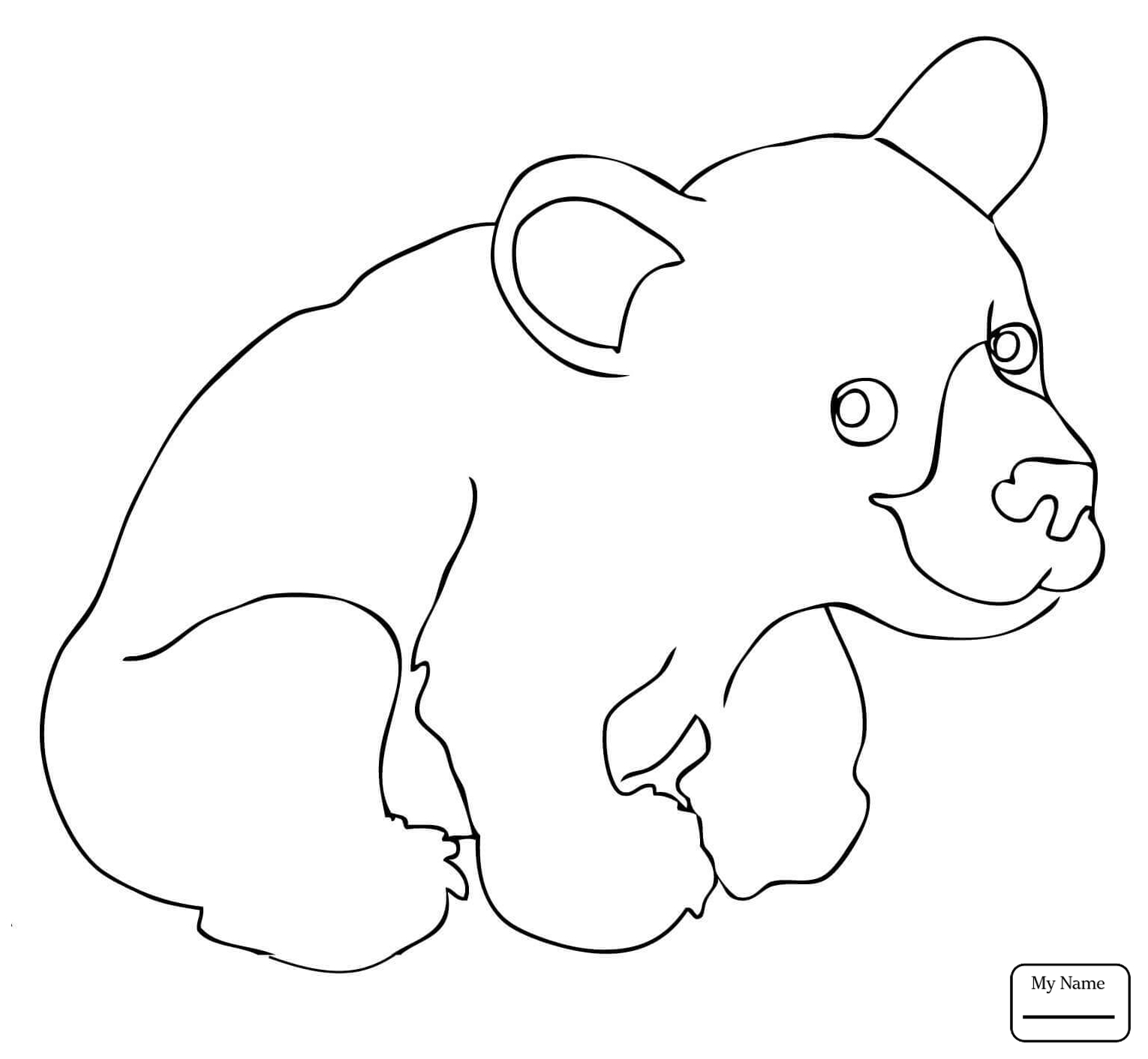 1530x1412 Brown Bear 9 Mammals Cartoon Bears Coloring Pages For Kids