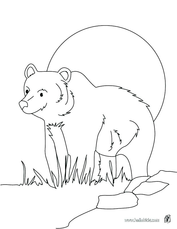 618x799 Brown Bear Coloring Sheet Little Brown Bear Coloring Picture Big