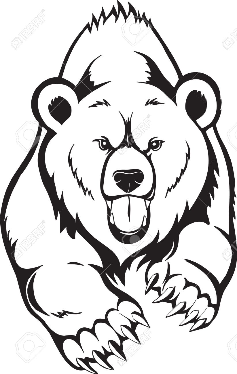 823x1300 Brown Bear Grizzly. Royalty Free Cliparts, Vectors, And Stock