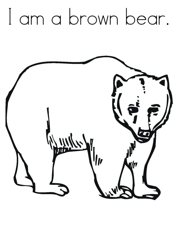600x776 Extraordinary Brown Bear Coloring Pages 98 For Download Coloring