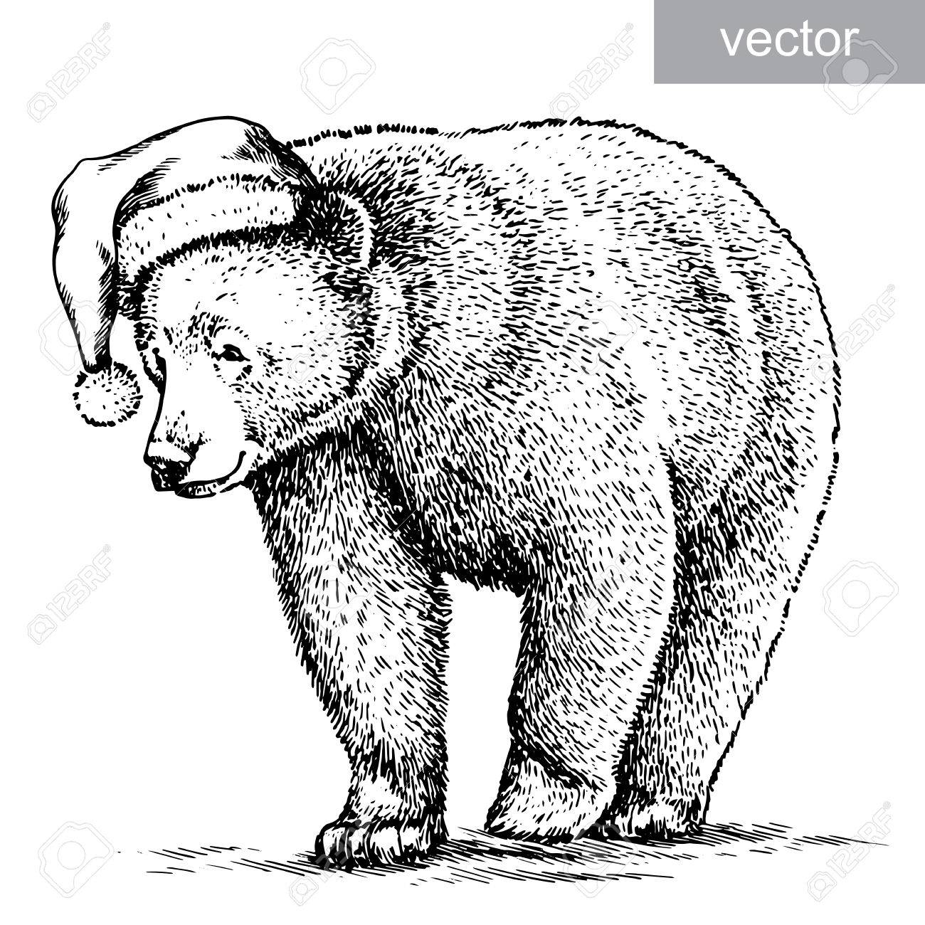 1300x1300 Brown Bear, Black And White Engrave. Christmas Hat. Vector Royalty