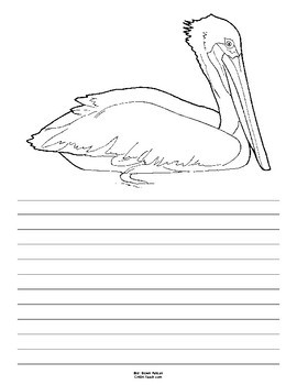 270x350 Louisiana State Bird Notebooking Set (Brown Pelican) By Creations