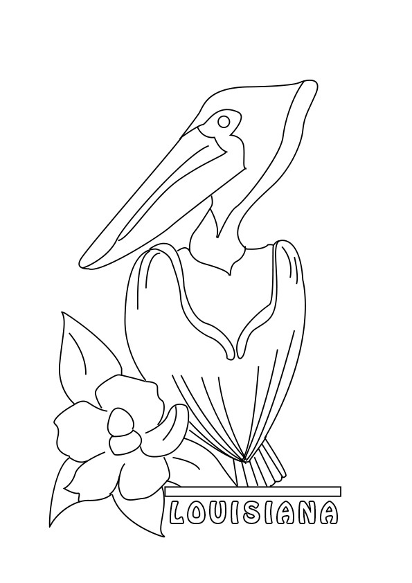 595x842 Pelican Coloring Pages