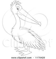 236x246 Best Pelican Drawing Illustration Amp Cartoons Free