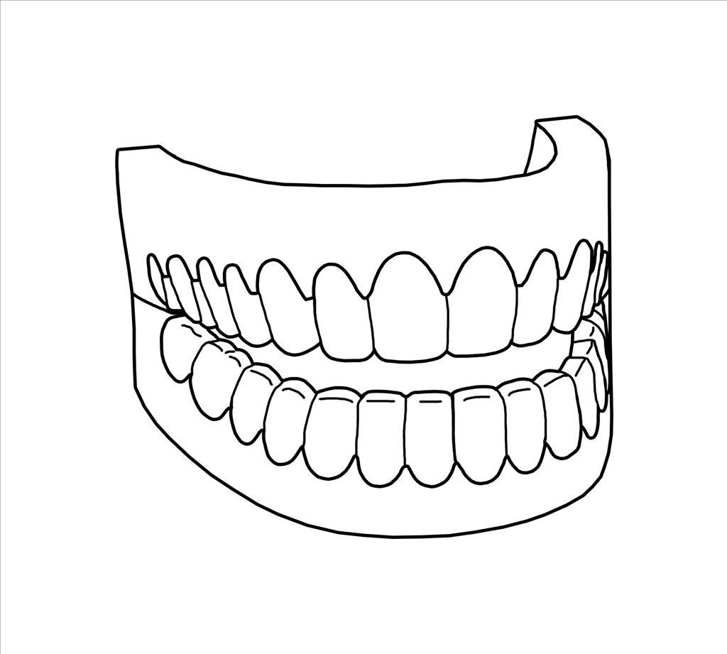 1024x921 Teeth Coloring Pages With Top Free Printabe Of For Kids Printable