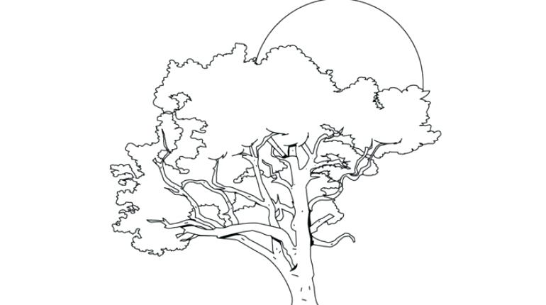 770x430 Ohio State Coloring Pages State Tree Coloring Draw Ohio State