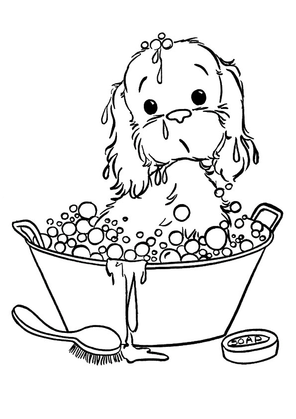 595x842 Puppy Taking In Bubble Bath With Cute Face