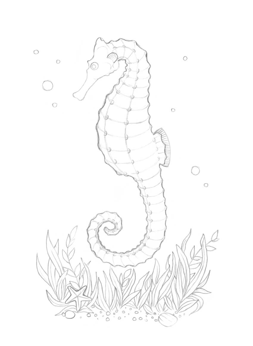 850x1163 How To Draw A Seahorse With Black And Grey Ink Liners