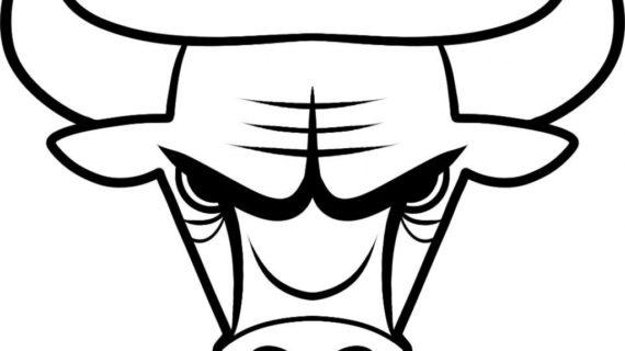 570x320 Drawings Of Bulls Bucking Bull Drawings Related Keywords Amp