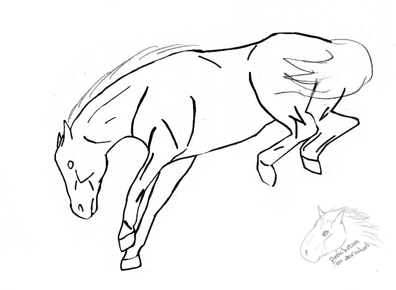 800x587 Bucking Horse Lineart By Peachesrox