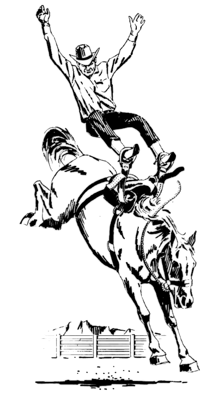 Bronco Horse Printable Pictures To Color - Worksheet & Coloring Pages