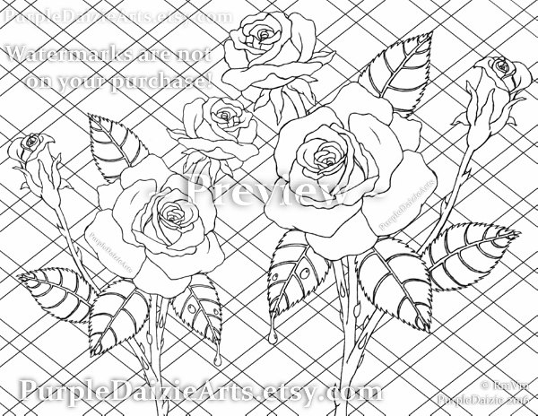 600x464 Adult Roses Coloring Page Printable Colour Digital Color Sheet