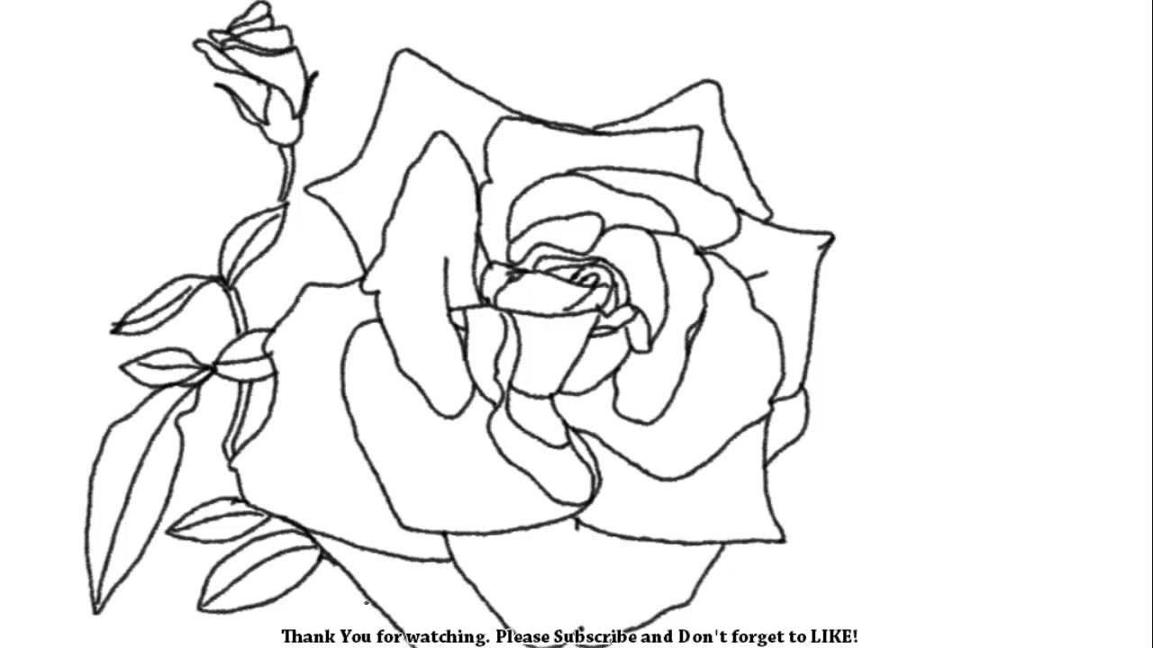1280x720 Rose Flower Picture Drawing How To Draw An Open Rose Flower