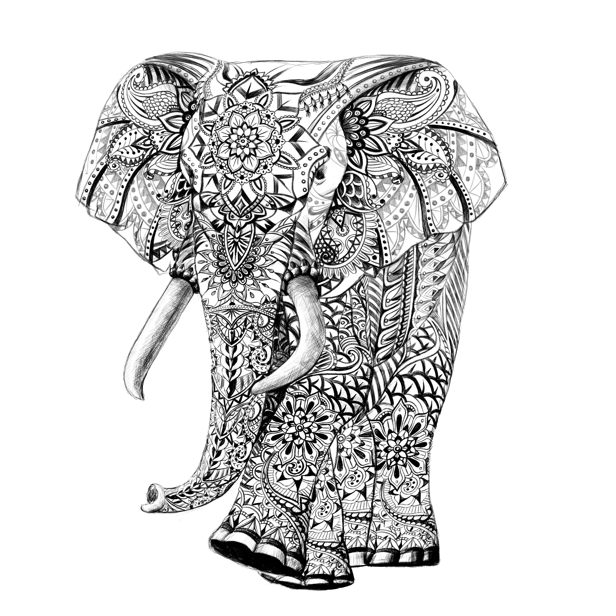 buddha elephant drawing at getdrawings com free for personal use