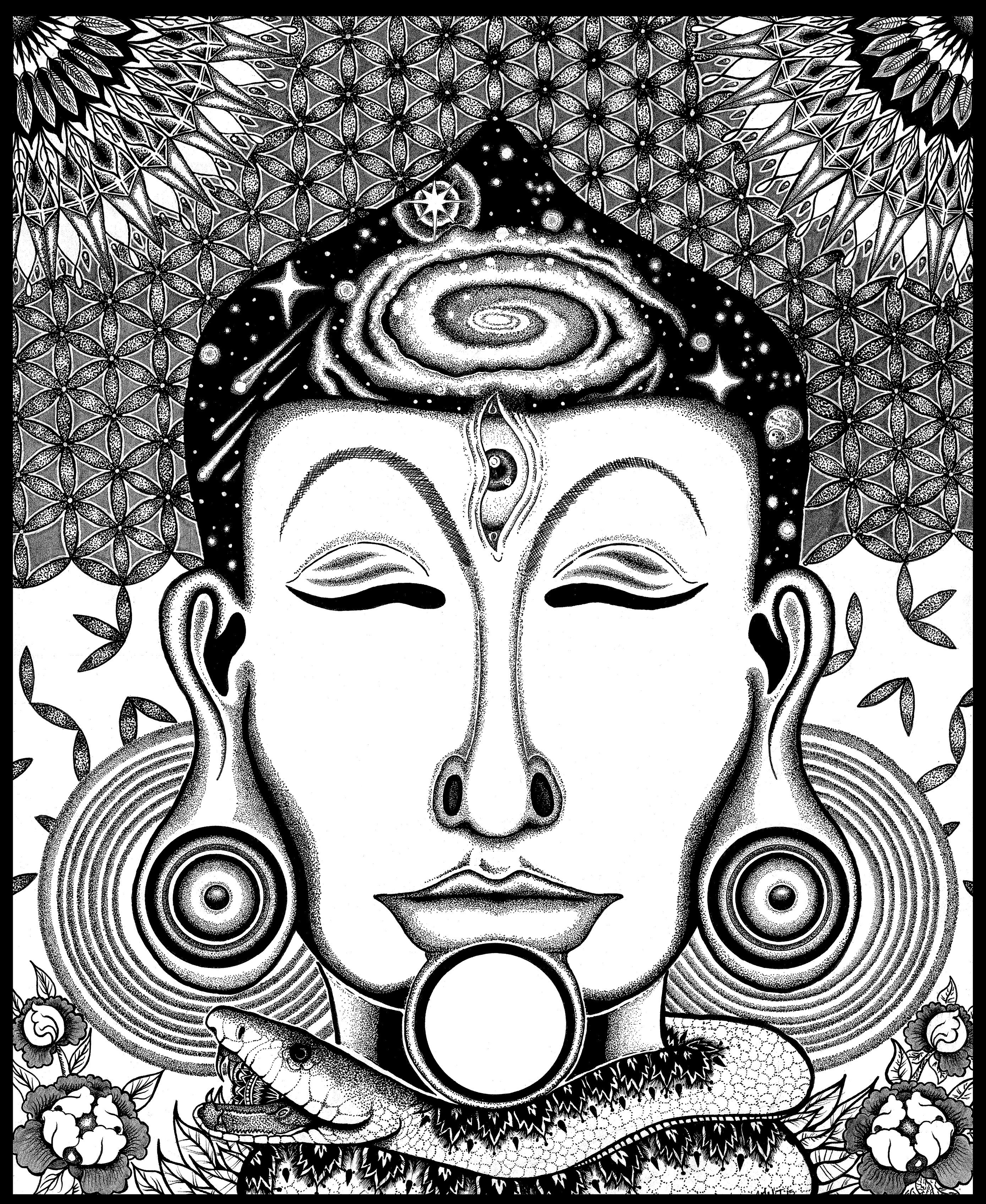 2778x3392 Buddha Head Ebb And Flo