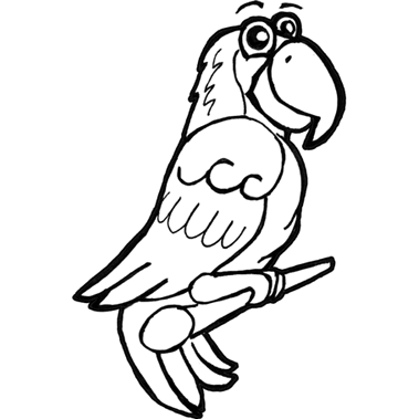 379x379 How To Draw Cartoon Parrots Amp Macaws With Step By Step Drawing