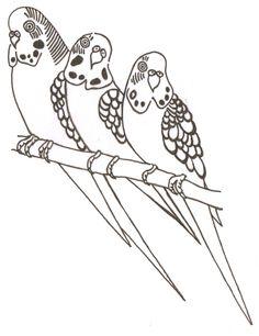236x306 Budgie Drawing Drawing Ideas Budgies, Bird