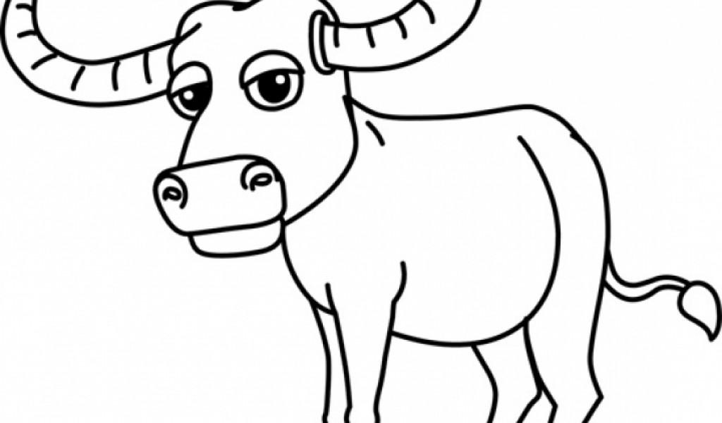 1024x600 Buffalo Clipart Png