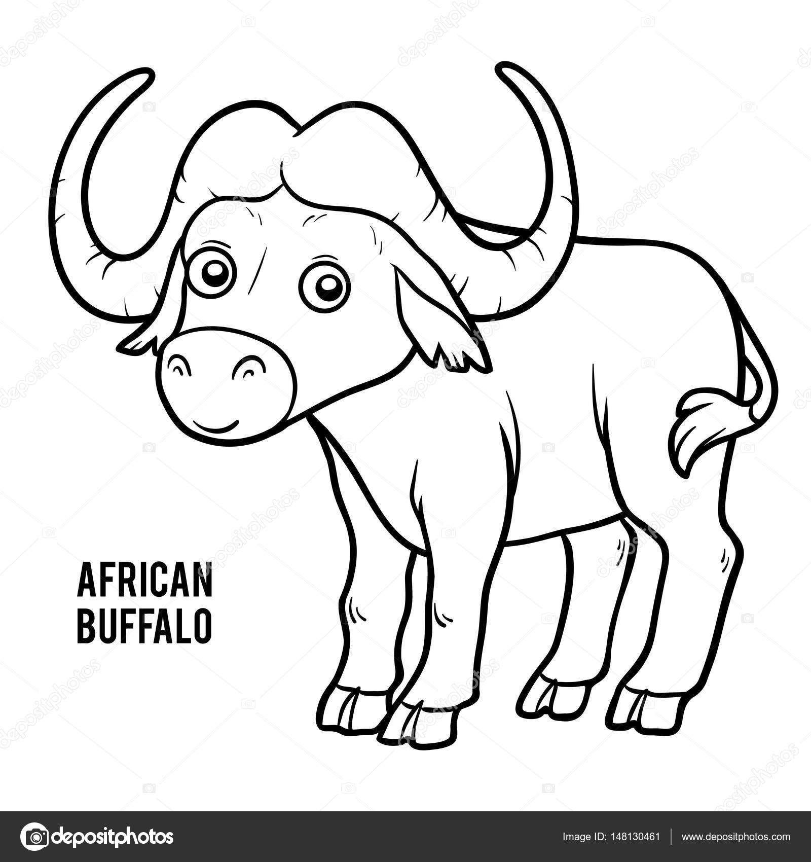 1600x1700 Coloring Book, African Buffalo Stock Vector Ksenya Savva