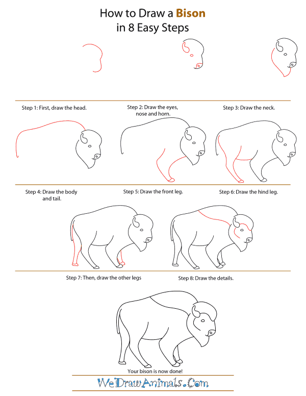 600x776 Drawing How To Draw A Buffalo Cartoon Also How To Draw A Buffalo