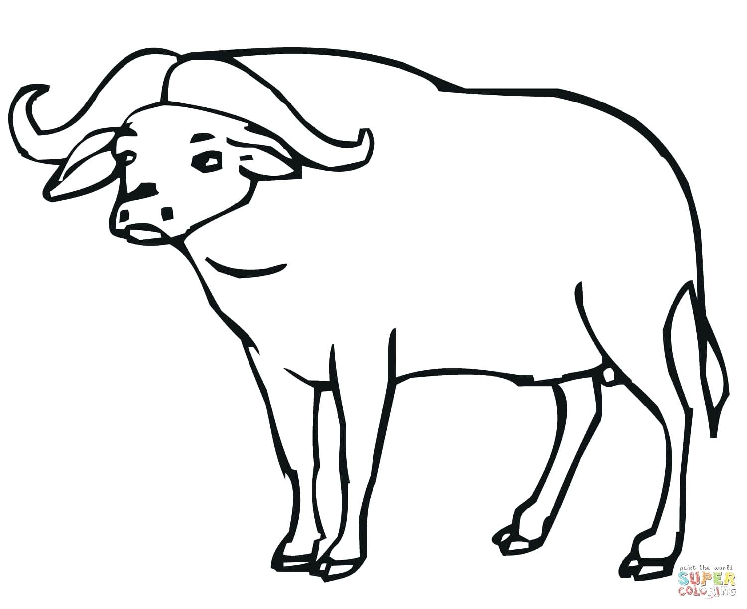 1500x1224 Coloring Buffalo Coloring Pages How To Draw A Turtle Cartoon