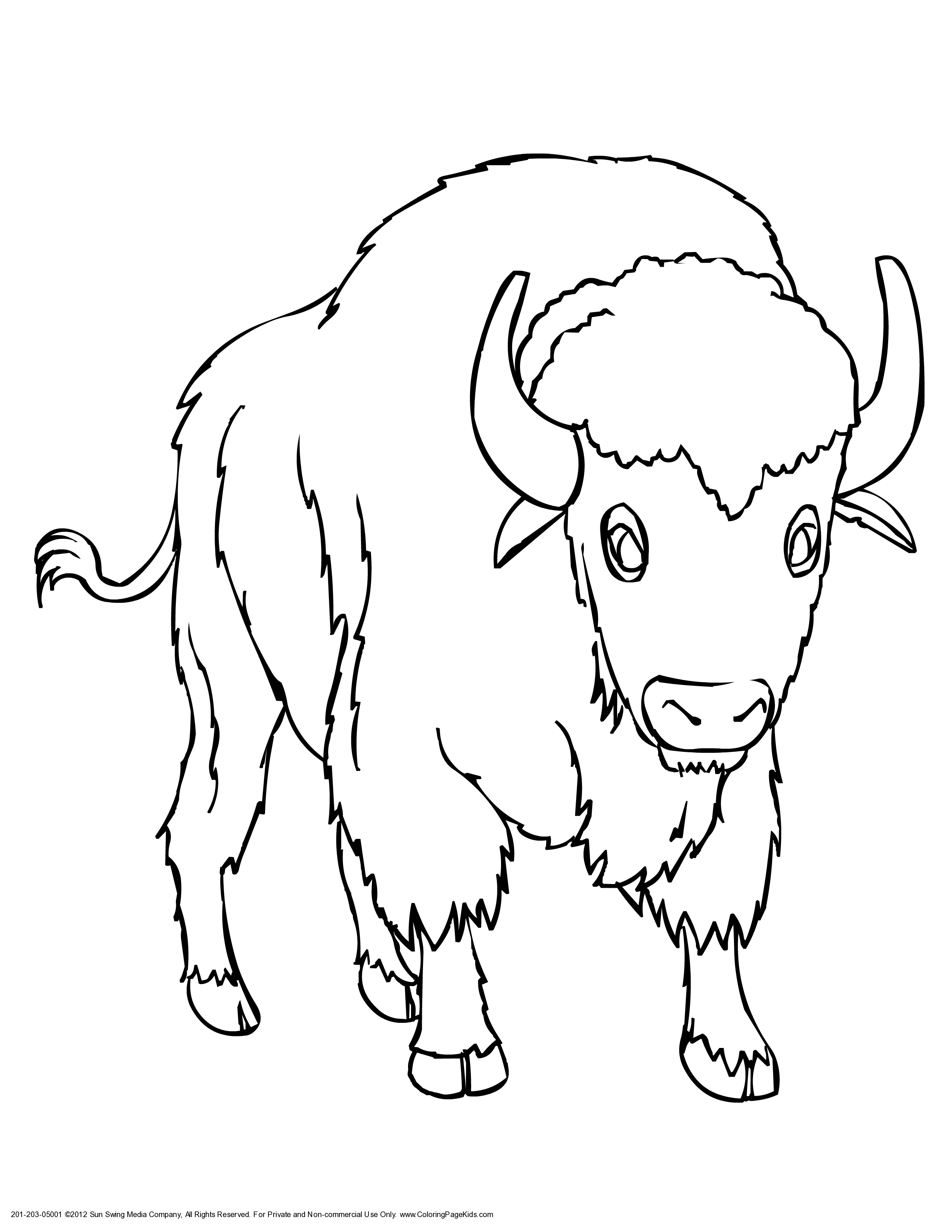 2550x3300 Drawing Of A Buffalo Download Coloring Pages Draw A Buffalo