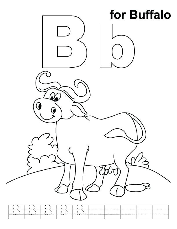 612x792 Buffalo Bills Coloring Pages Buffalo Coloring Pages For Kids