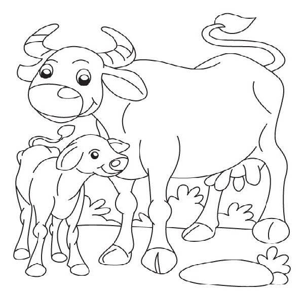 600x574 Buffalo Coloring Pages Mhtfk