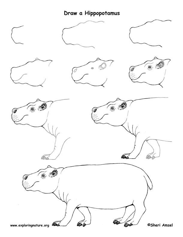 611x792 Drawing72