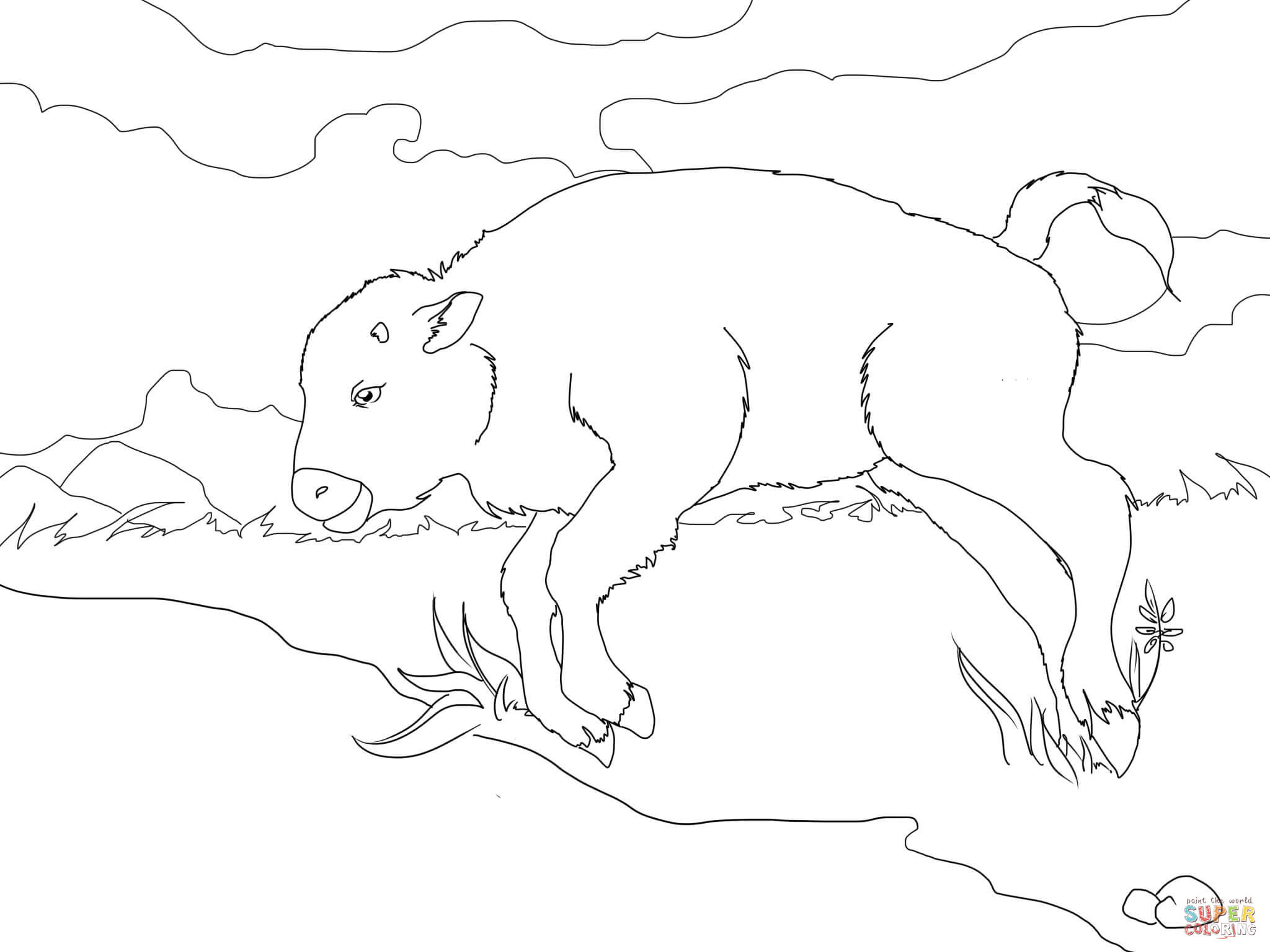 2048x1536 Coloring Pages Winsome Coloring Pages Draw A Buffalo 02 Bison