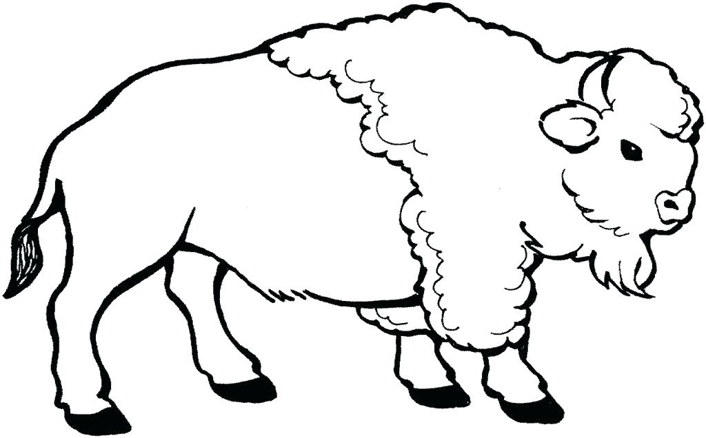 1024x636 Buffalo Coloring Pages Nice Bison Coloring Page For Kids Buffalo