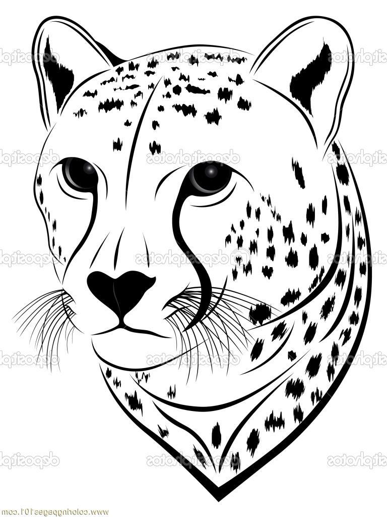 768x1024 Cheetah Face Coloring Sheet